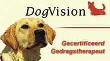 Gecertificeerd hondengedragstherapeut Dog Vision